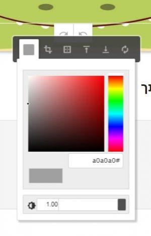 בחירת צבע